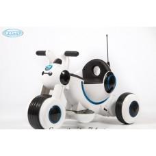Электромотоцикл Barty Y-Maxi YM77 белый