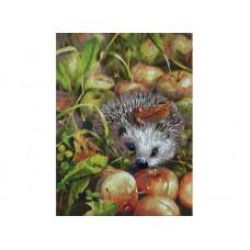 Раскраски по номерам Яблочный ёжик 30*40 см