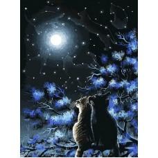 Живопись на холсте 30*40 см Созвездия