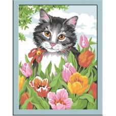 CE109/Кошечка в тюльпанах - картина по номерам